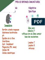 Immunité Innée Système Du Complément Et Rôle Du Polynucléaire Neutrophile