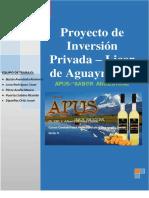 Proyecto de Inversion de Licor de Aguaymanto