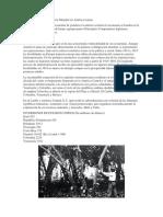 Efectos de la Primera Guerra Mundial en América Latina.docx