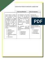 Patologias II (1)