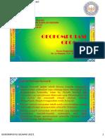 Pengantar Solusi Numerik.pdf