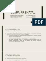 1.1 Etapa Prenatal.pptx