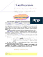 Auditoria Ambiental Para La Prevencion de La Contaminacion Ambiental