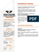 CURRICULO-MAYDITA