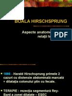 BOALA  HIRSCHPRUNG