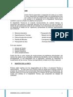 Visita a Obra - Informe Gonzalo