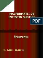Malformatii de Intestin Subtire