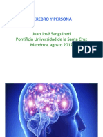 CEREBRO_Y_PERSONA._Power_Point.pdf
