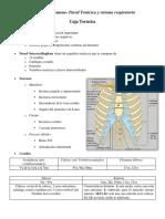 Resumen Anato #4.pdf