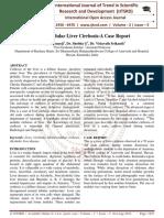 Mixed Nodular Liver Cirrhosis:A Case Report
