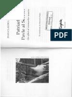 Pavle.pdf