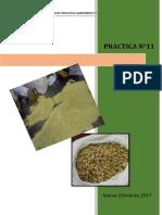 PRAC-11-extrusion-de-alimentos.docx