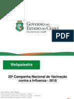 Web Palestra Influenza SESA