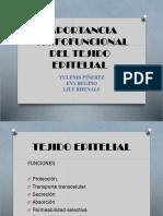 tejido epitelial.pptx