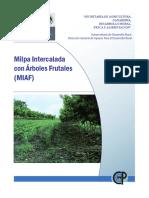 Milpa Intercalada con Árboles Frutales (MIAF) - www.FreeLibros.com.pdf