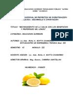 Proyecto Del Limon Enfermeria Tecnica III IESTP.