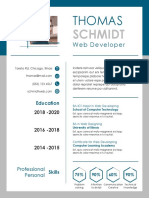 Three Page Resume