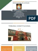 Tribunal Constitucional 11111