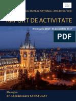 raport de Activitate 2017