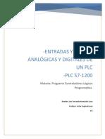 Entradas y Salidas Analogicas y Digitale.docx