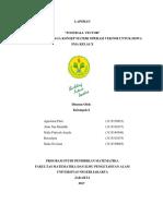 LAPORAN.pdf