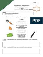 aseguramiento  C.Naturales.docx