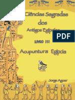 As Ciências Sagradas Dos Antigos Egípcios Acupuntura Egípcia (as Ciências Sagradas Do Antigos Egípcios Livro 3)_nodrm