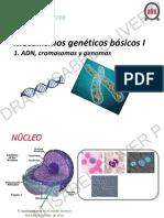 4 Bio130med.17.Mio