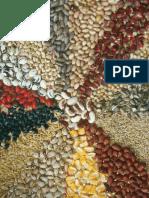 Jan Douwe Van der Ploeg - Sete teses sobre a agricultura camponesa.pdf