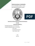AUDITORIA ENERGETICA.docx