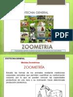 zooometria