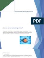 Manipulación genética en fetos y embriones.pptx