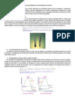 PRACTICA 1 Cinética Química y Biológica