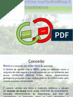 1 ANO-Biomas do Planeta(1).ppt