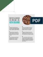 Consejos Cafe Calidad