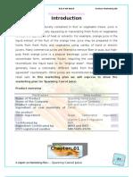 Report on Marketing Promotion Shovon