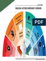 FACTORES ENDÓGENOS Y EXÓGENOS.pdf