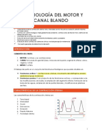 13. Fisiología del motor y canal blando.pdf