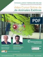 curso_exoticos.pdf