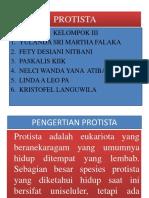 Protista Pp