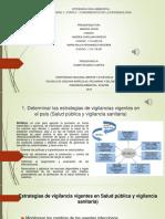 EPIDEMIOLOGIA AMBIENTAL CONSOLIDADO