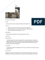 Sifat dan karakteristik kambing perah.docx