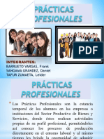 PRACTICA PROFESIONAL.ppt.pptx