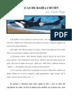 Las orcas de Bahía Chusín (Chule Fergu)