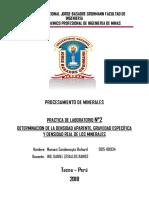 PRACTICA-DE-N2-PROCESAMIENTO-DE-MINERALE.docx