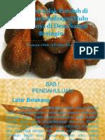 Budidaya Salak Pondoh di Kabupaten Indragiri Hulu.pptx