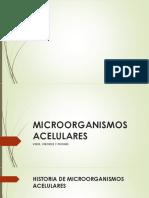 Microorganismos unicelares.pptx