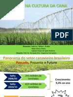 irrigacao_cana_2012.pdf