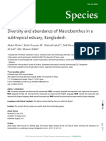 Diversity and Abundance of Macrobentos in a Subtropical Estuary, Bangladesh