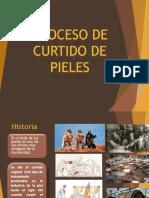 DIAPOS PROCESO DE CURTIDO.pptx